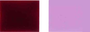 Pigment-gewelddadige-19-Color